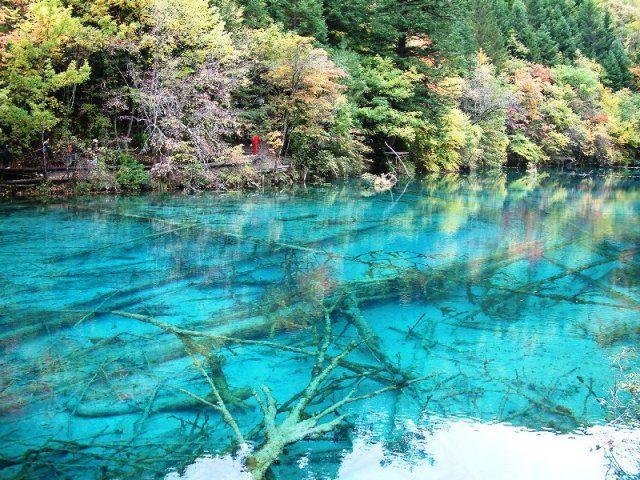 【中国】絶景!エメラルドに輝く、青く透き通った湖「九寨溝」 - TravelBook(トラベルブック)