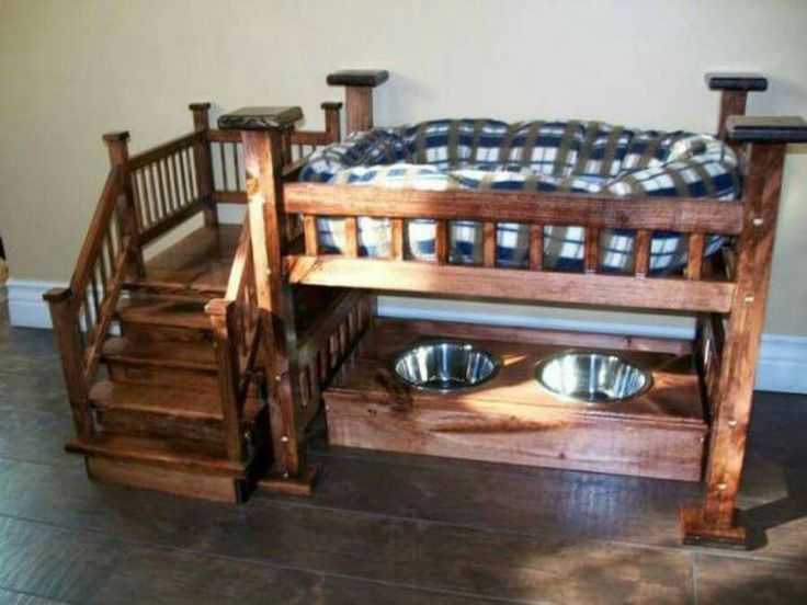 My dog will be spoiled rotten if they get this lol.