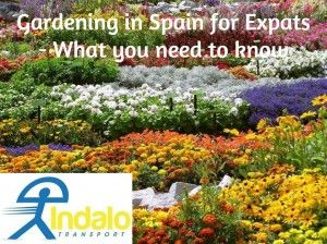 Flowers in Asturias - Indalo Transport