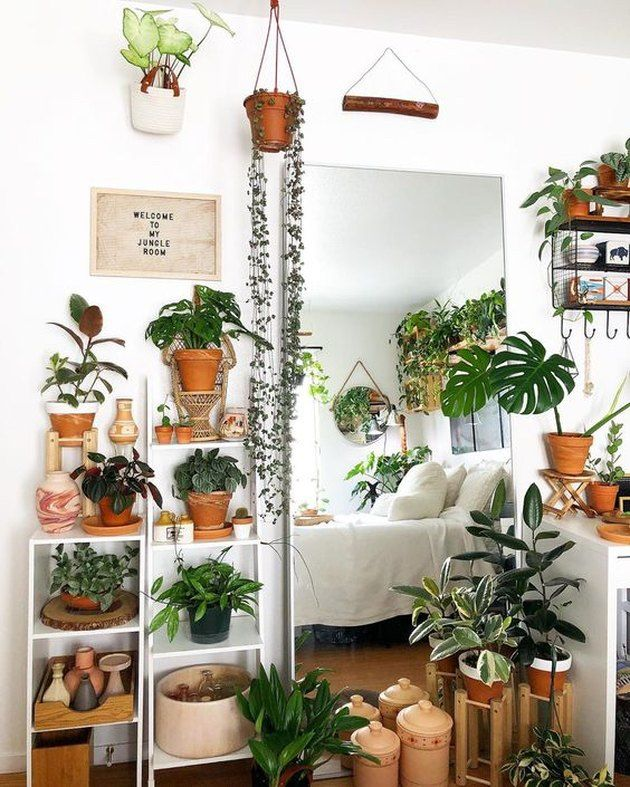 9 Plant Themed Bedroom Ideas That Ll Take Your Love Of Greenery To The Next Level Hunker Bedroom Plants Decor Plant Decor Indoor House Plants Decor