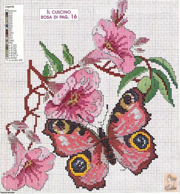 Gallery.ru / Photo # 9 - butterflies - anapa-mama