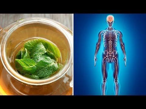 #HealthyLivingTips 5 Powerful Health Benefits of Lemon Balm (Melissa Essential Oil) #NaturalCure #Health