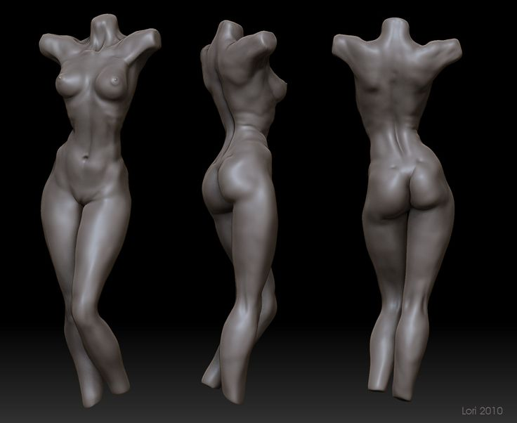 2D&3D works: Anatomy studying