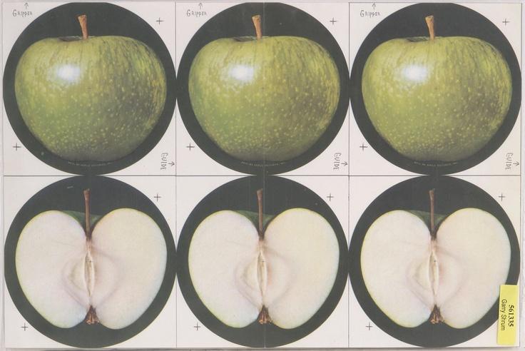 "AppleRecordsLogoProof.jpg 1,600×1,070 pixels ""Abby Road"