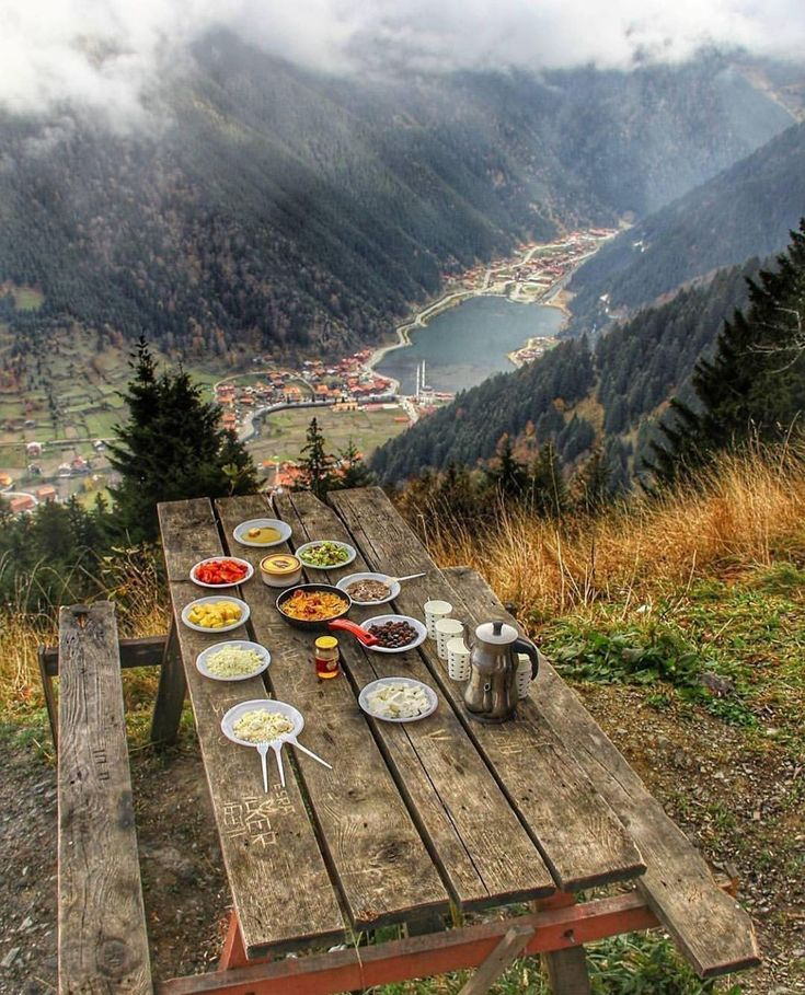 Breakfast with a view! 🌲 Tag who you'd share this view with! 🍃