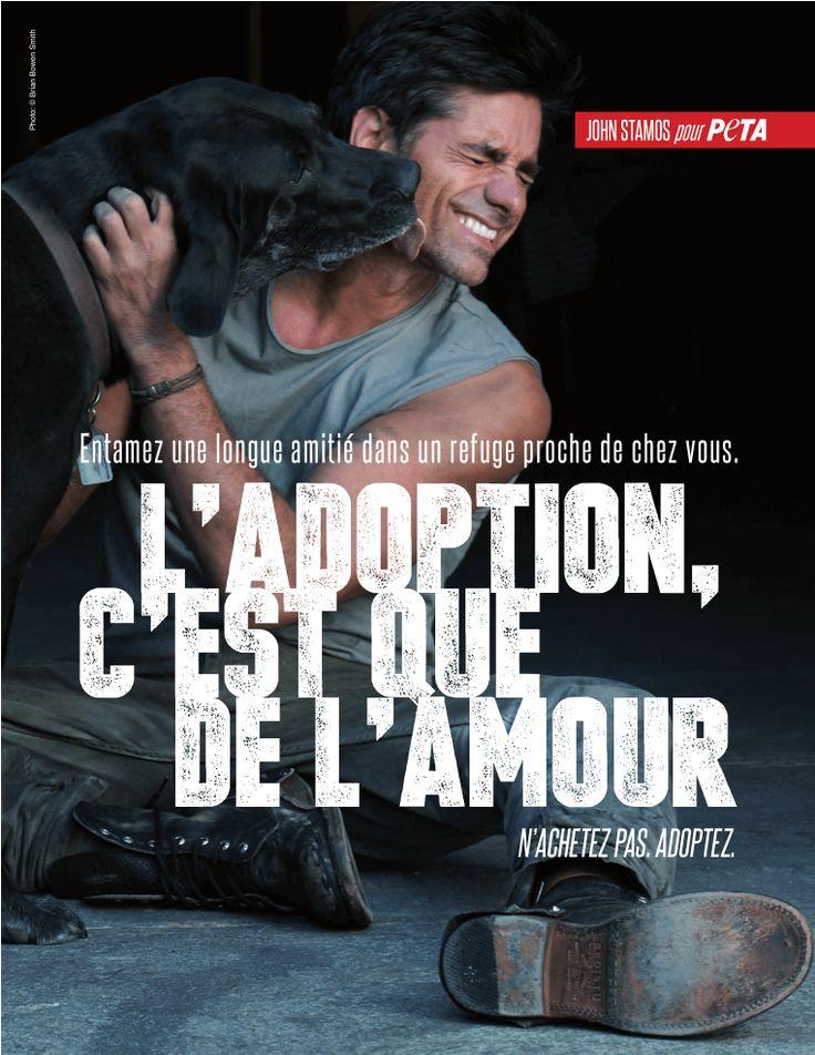 L'acteur de la série Urgences appelle le public à toujours adopter plutôt qu'acheter celui ou celle qui sera votre compagnon animal.