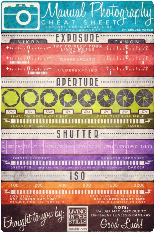 Manual photography cheat sheet from http://www.goinghometoroost.com