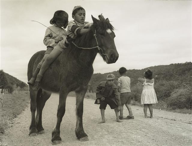 Ruatoki 1963. From: Maori Portfolio - Westra, Ans