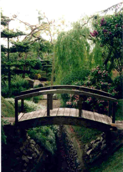 Beautiful Japanese Garden And Wooden Bridge