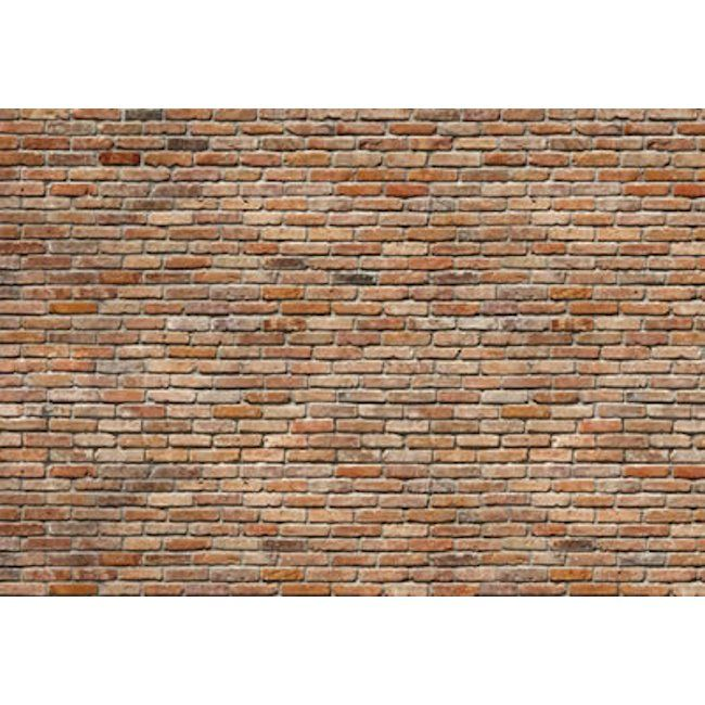 Mural | Backstein 8-741 - a great brick wall mural