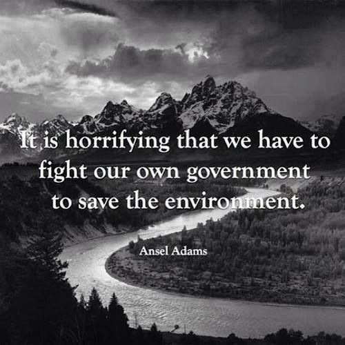 """It is horrifying that we have to fight our own #government to save the #environment"" - Ansel Adams 