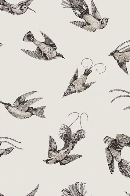 Cole & Son Frontier Wallpaper Ideas & Designs - Living Room & Bedroom (houseandgarden.co.uk)