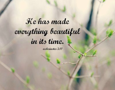 Ecclesiastes 3 Art He Made Everything Beautiful Time Print Scripture Verse Bible Quote Art Christian Nature Spring Typography