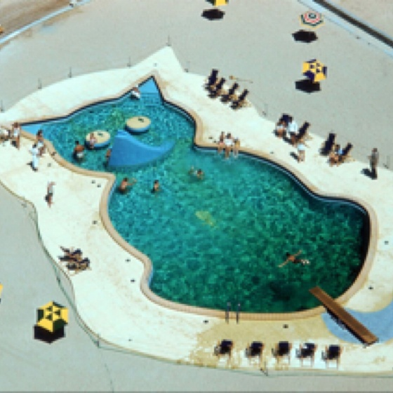 Cat shaped pool by slim aarons Fontainebleau Hotel Miami circa 1955