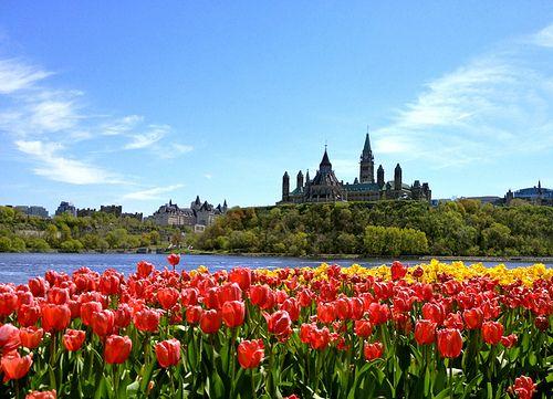 Ottawa, Ontario in the spring.
