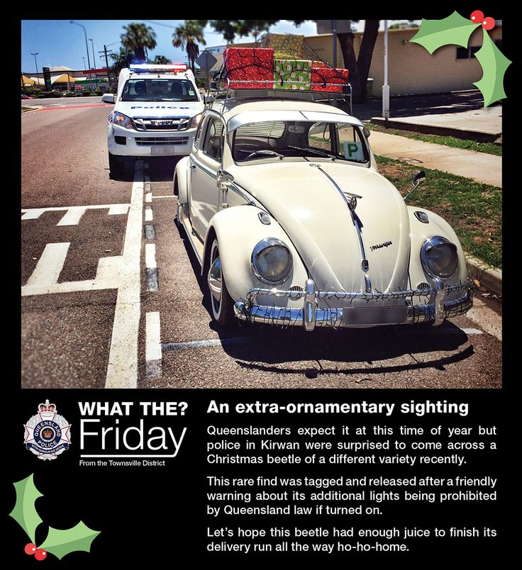 What the? Friday! Highlighting the bizarre things our officers see like...  An extra-ornamentary sighting #WTFriday