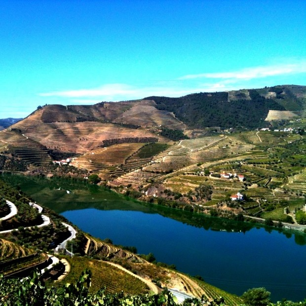 Porto's stunning Douro valley. What a view! Portugal