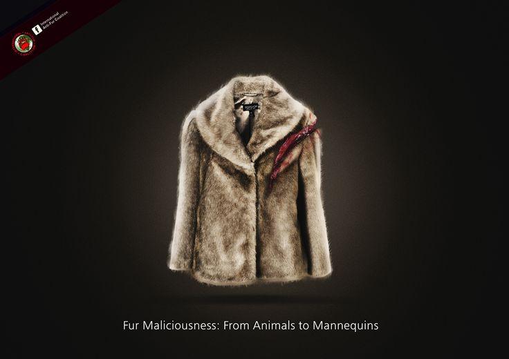 269 fur on Behance