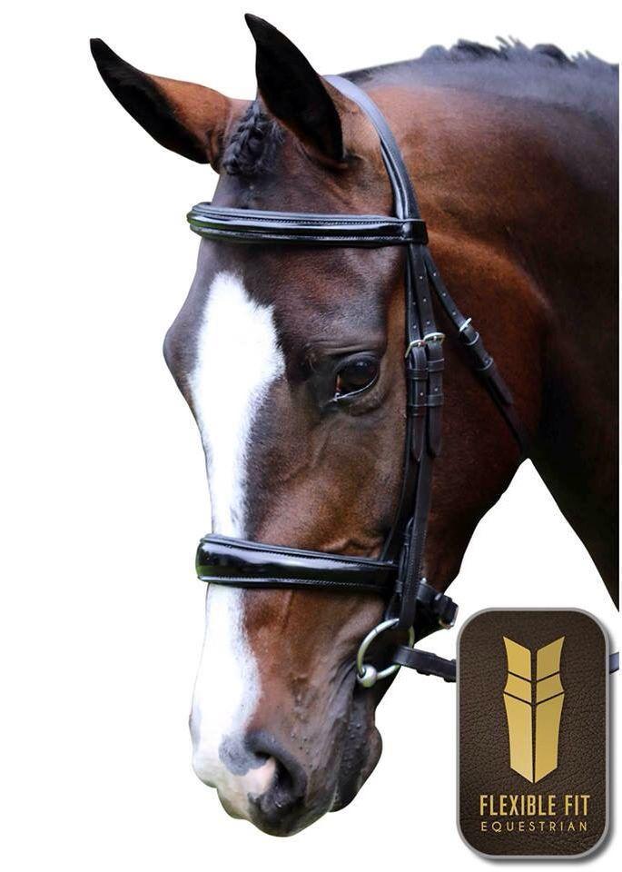 Bay Horse Black English Dressage Bridle Stallion Gelding Mare