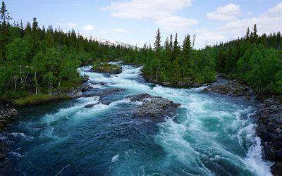 Scarica sfondi albero verde, norvegia, fiume di montagna, soglie, foresta, montagne, fiume