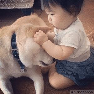 Baby is trying to eat dog alive | Gif Finder – Find and Share funny animated gifs