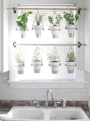DIY Hanging Herb Garden - across a window