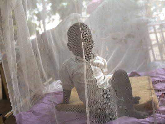 Bill Gates says were witnessing 'one of the greatest success stories in the history of global health' as malaria death rates plummet