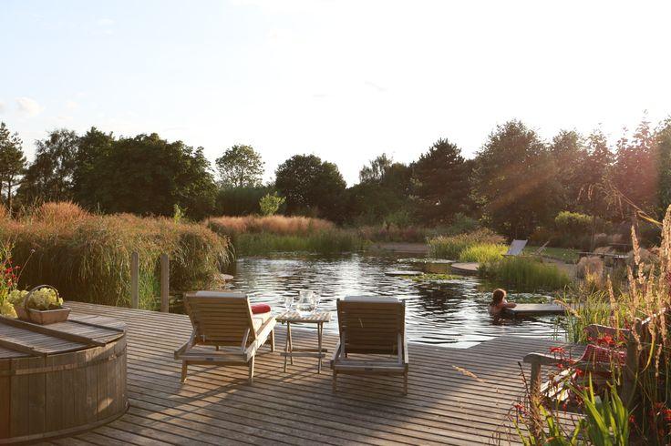 evening swim Ellicar Gardens Natural Pool