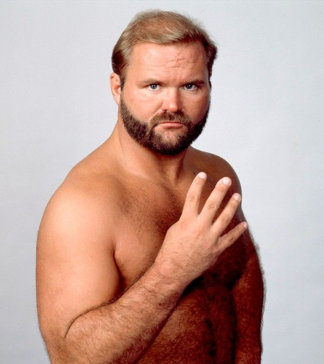 """""""The Enforcer"""" Arn Anderson"""
