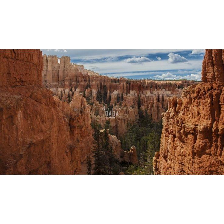 """Bryce Canyon  Reportage naturalistico lungo il """"West"""". Terra di frontiera, territorio unico per catturare scenografie naturali da lasciare senza fiato. Non vi è alcun altro paesaggio del pianeta capace di competere in bellezza, in immensità degli spazi e profondità del cielo.  Gli #hoodoos dell'anfiteatro naturale del Bryce canyon brillano di splendide tonalità d'arancio. U.S.A. #Utah, Bryce #Canyon #nature #landscape #orange #sky #rocks #photography"""