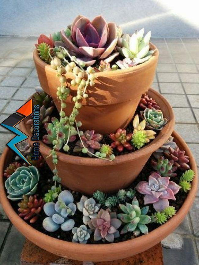 Spaß und Spaß: Turm 1 der Sukkulenten | Plantas de casa | Pin …  #plantas #s…