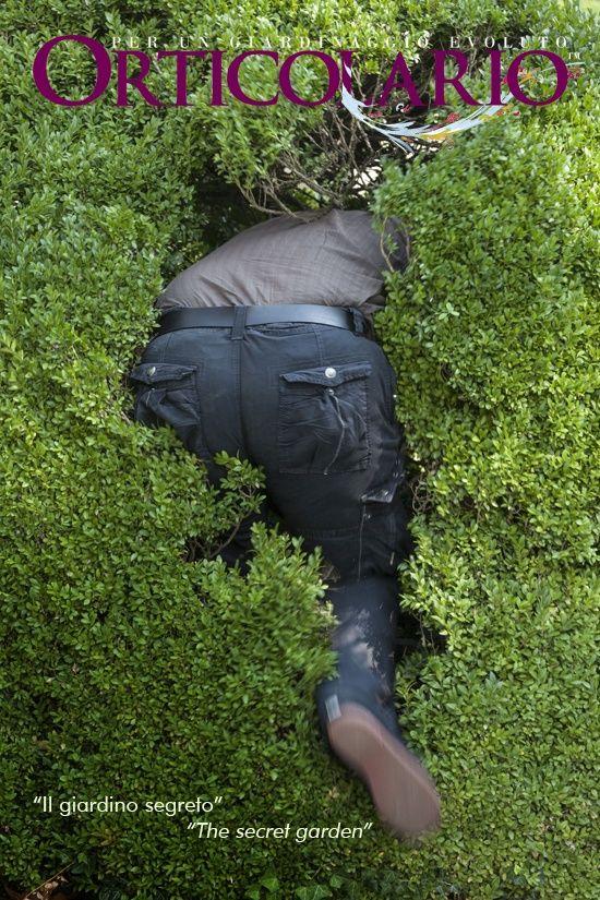"""Omaggio al film """"Il giardino segreto"""" di Fred M. Wilcox (titolo originale: The secret garden, USA 1949) Foto di Dario Fusaro http://www.orticolario.it/index.php?pag=1&ins=506"""