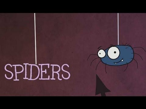 Cute short video, 3rd grade Spiders. . . . Spider Facts - Mocomag Kids Magazine (Issue 1) | Mocomi Kids