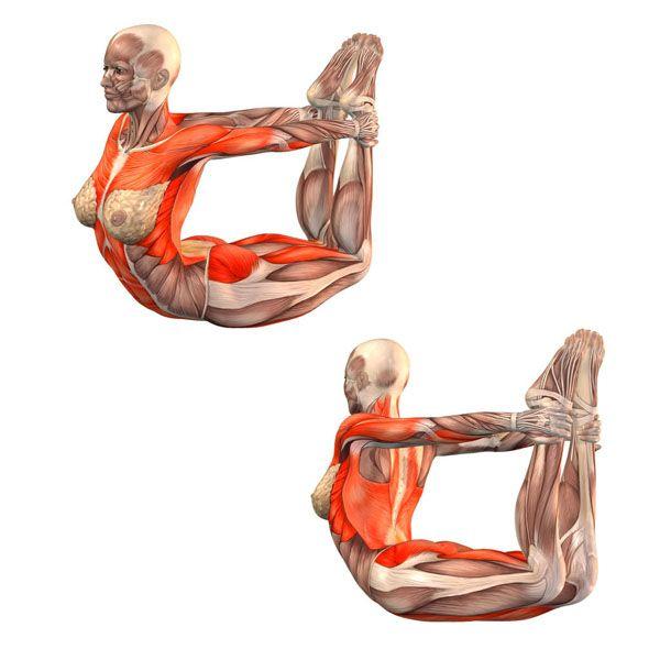 Bow pose - Dhanurasana - Yoga Poses | YOGA.com