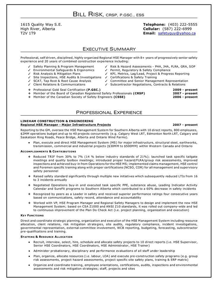 Resume Executive Summary How to draft a Resume Executive