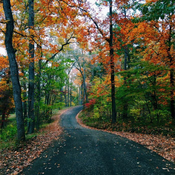 8 Country Roads In Texas That Are Pure Bliss In The Fall