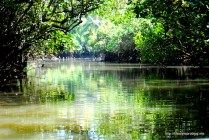Poovar Backwaters -  http://lifestyleproblog.me/poovar-dream-holiday-living-water/