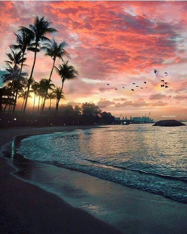 the beautiful seaside scenery - photo #11