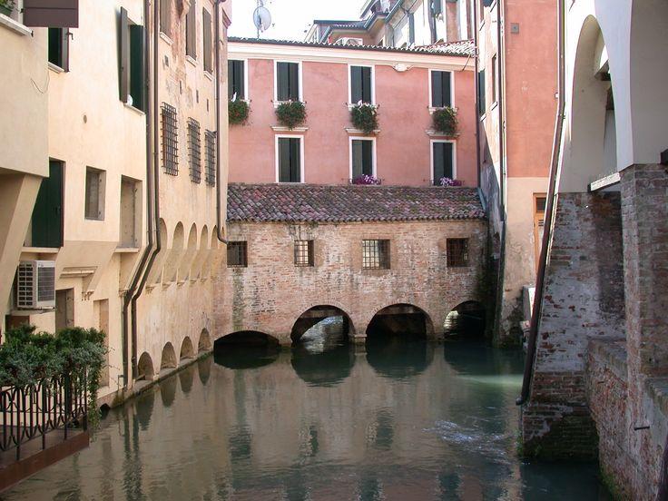 Buranelli, Treviso