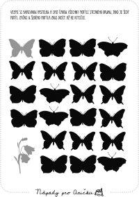 Motýlí cestička - zrakové rozlišování
