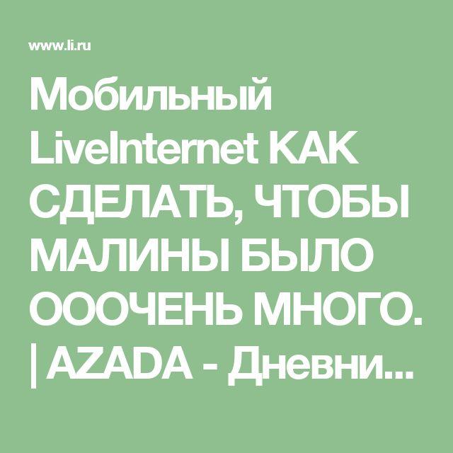 Мобильный LiveInternet КАК СДЕЛАТЬ, ЧТОБЫ МАЛИНЫ БЫЛО ОООЧЕНЬ МНОГО. | AZADA - Дневник AZADA |