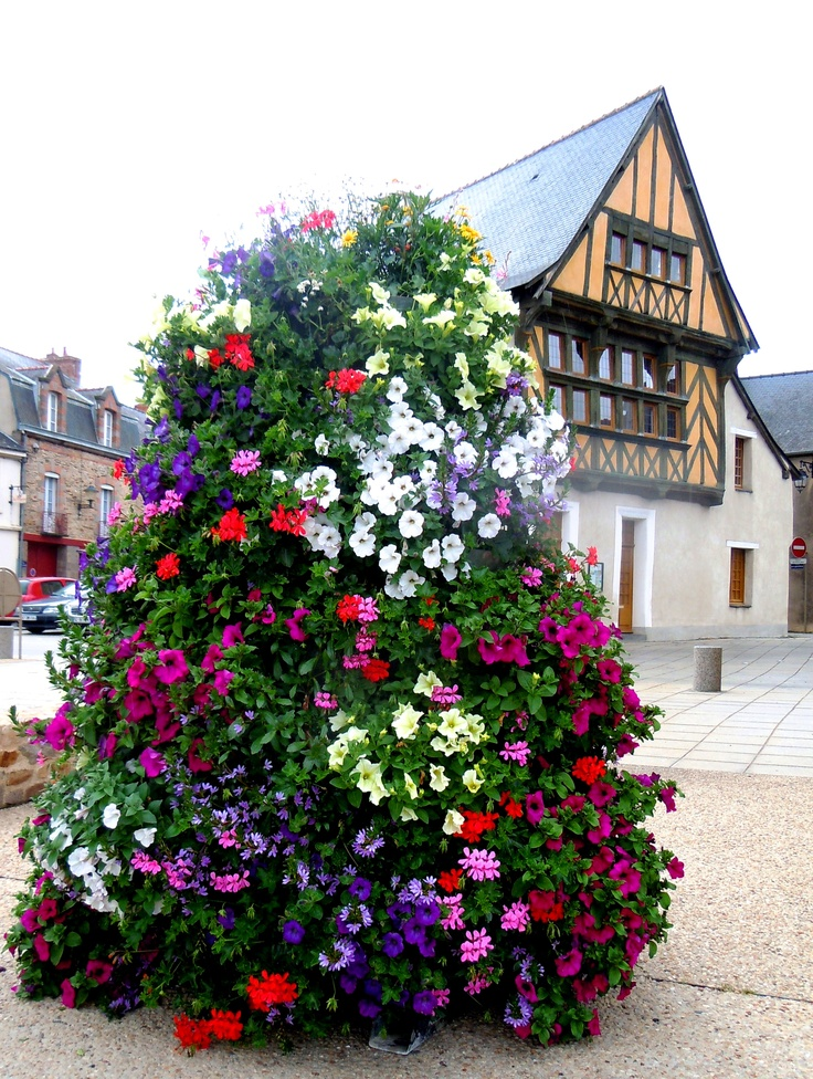 A petunia tower in brittany exterior yard and garden for Gardening 101 australia