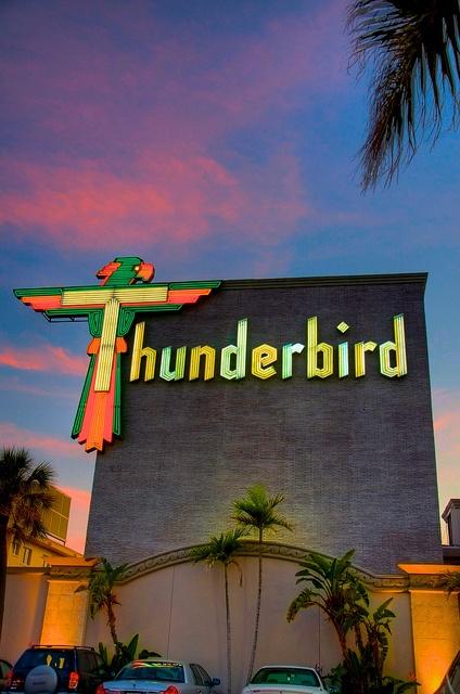 thunderbird motel, treasure island / st. petersburg, fl