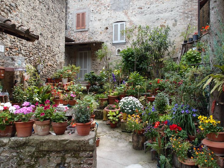 Vegetable gardening ideas in tiny spaces top 10 tips urban