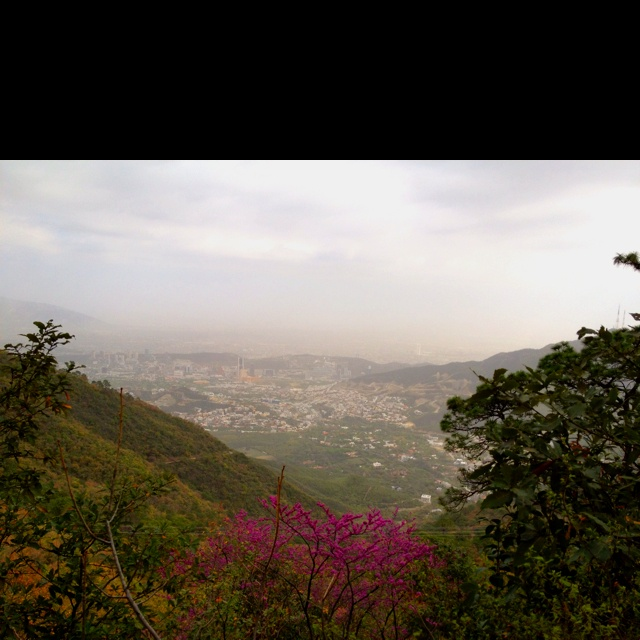 City view from Chipinque