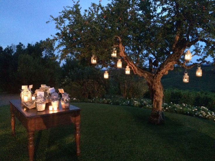 albero di melograno con lanterne