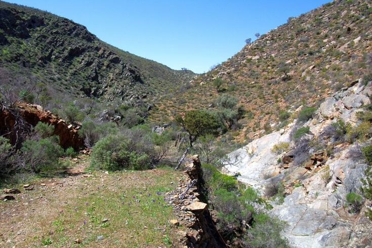 An old road through Tourilie Gorge, east of Mt Bryan East. The road was built to allow bullock trains to take farmer's harvest east to the Murray River for transportation to Adelaide. When Port Germain was opened the harvest was taken there, and later by railway.