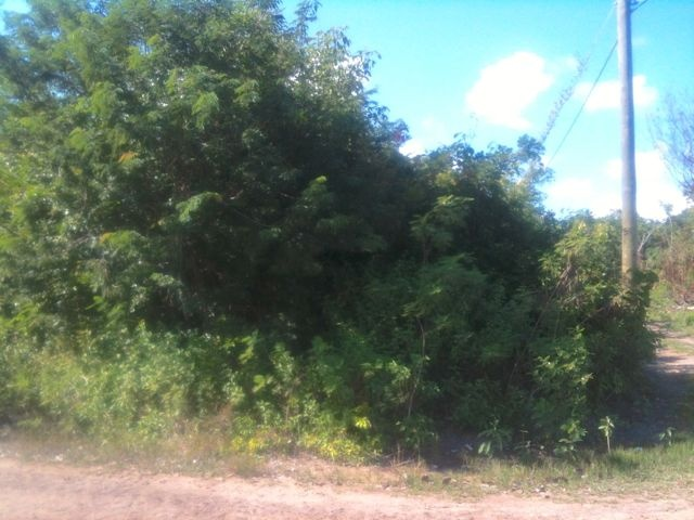 Finca Solana Land 60x80 01: This vacant Corner-Lot is ideally located in one of the most constantly developing and continuously growing expat community of Corozal Town, in Corozal District.  A mixed income community surrounds this parcel with houses ranging from as low as $200,000 BZE to $2,000,000 BZE placed at its highest value.  The Corozalairstrip is only a 5 minutes drive away from Corozal Town and 20 minutes away by plane to San Pedro.  $45,000 US