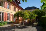 La terrasse de l'Hôtel de l'Aigle, au soleil!
