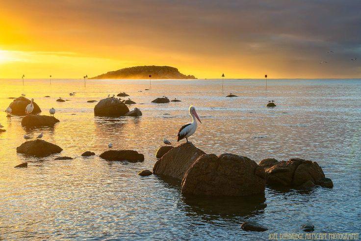 Encounter Bay, Victoria Harbour, SA